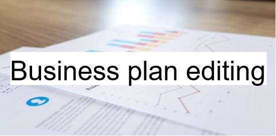business plan editing service